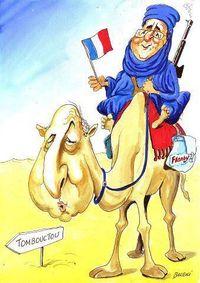 Hollande chameau