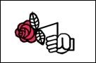 Rose brisée