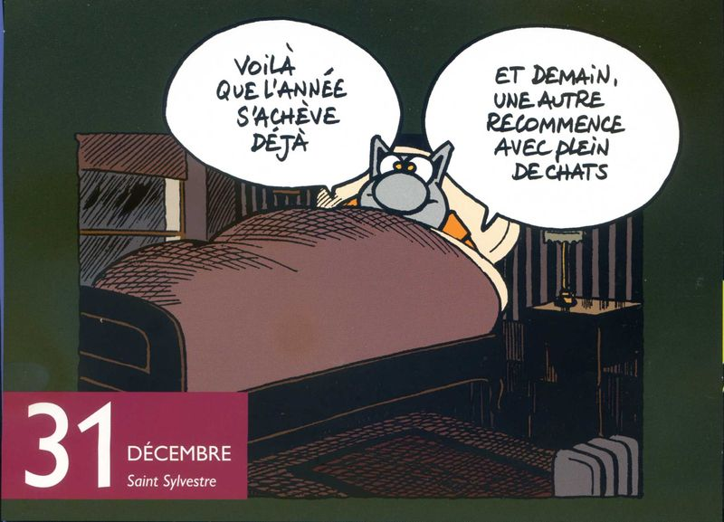 Saint sylvestre chat001