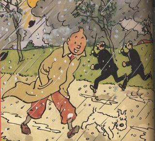 Tintin froid